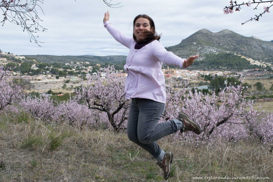 campos almendros en flor alcalali